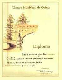 CMO medalha cobre