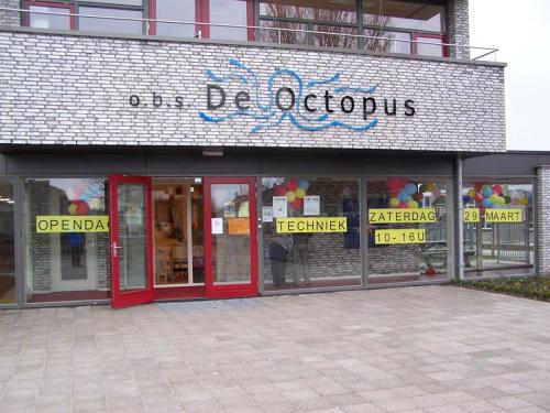 _____________________________________________escola octopus_1